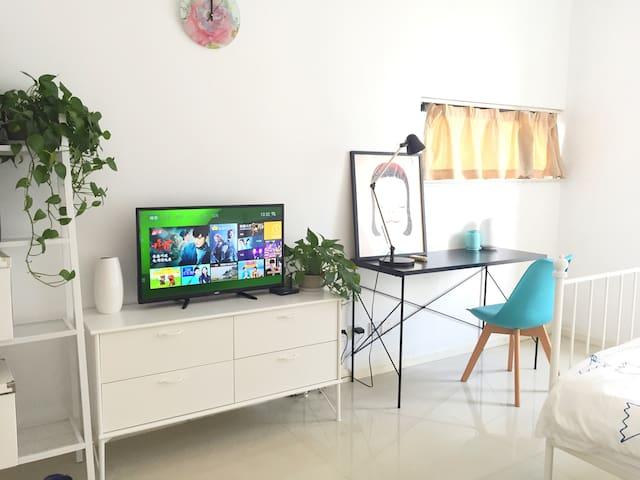 可爱的房子,地铁口50米精致的公寓,位于繁华商圈,交通便利 - Suzhou - Daire