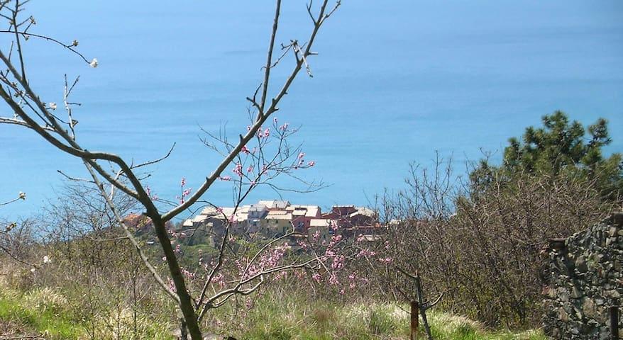 Via V. Vinzoni 27 - Montaretto
