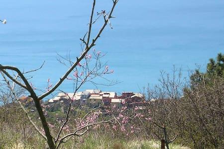 Via V. Vinzoni 27 - Montaretto - Apartament