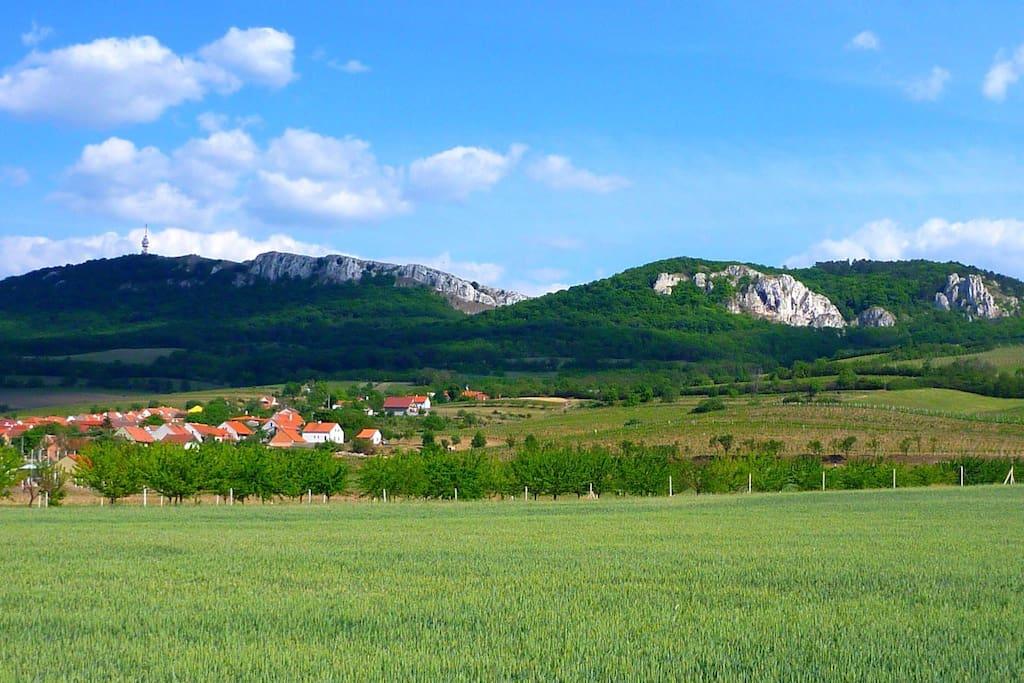 Horní Věstonice