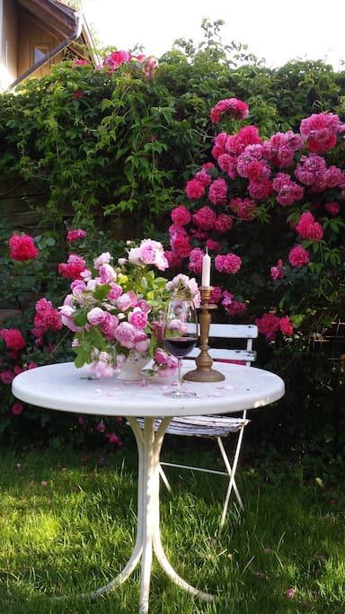 Wild-romantischer Garten