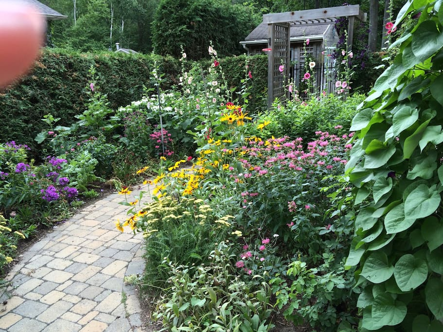 Side garden with path to back