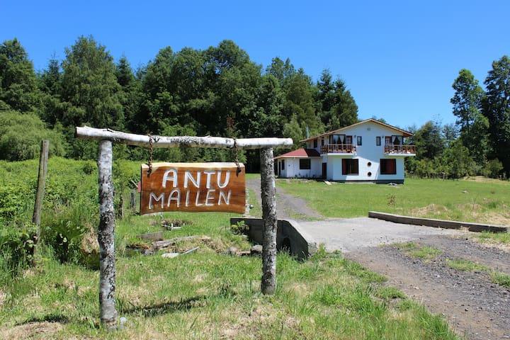 Hospedaje Antumailen.  Habitación matrimonial