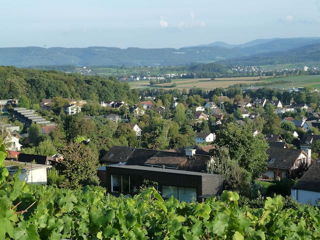 Modern architecture in vineyard - Biel-Benken - Misafir suiti