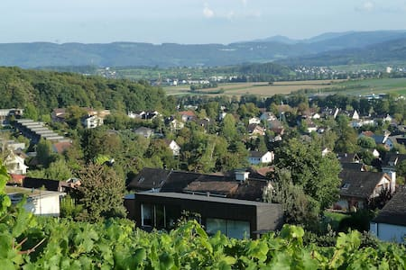 Modern architecture in vineyard - Biel-Benken - 客房