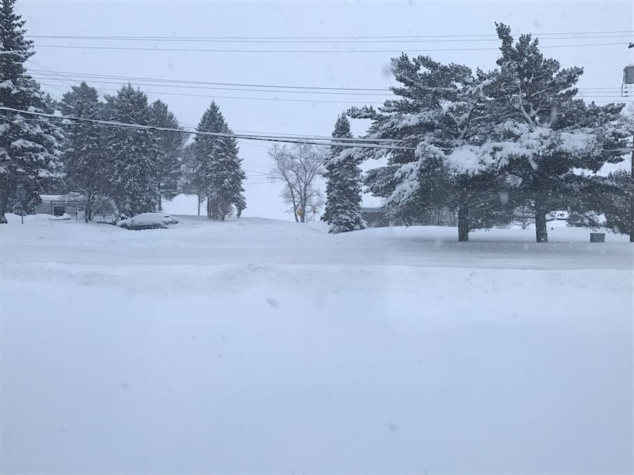 It's a Winter Wonderland! View from Living Room. Snowmobile Trail in sight!