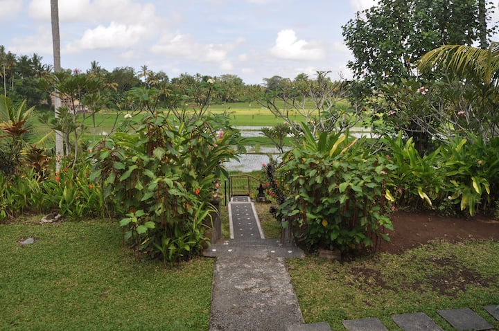 Home in the ricefields ( 2BR include Breakfast )