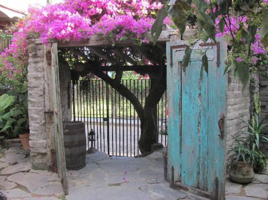 Entrance/La Entrada