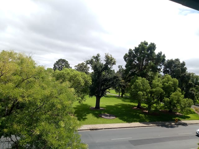 North Adelaide apartment with great views.