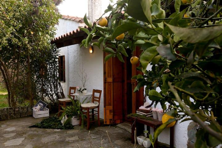 Oνειρικό bungalow ιδανικό για εξόρμηση στη φύση