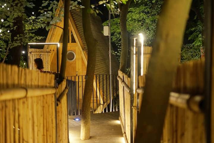 夜色景观木屋