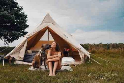 Peaceful 🌞 Homestead Glamping 2