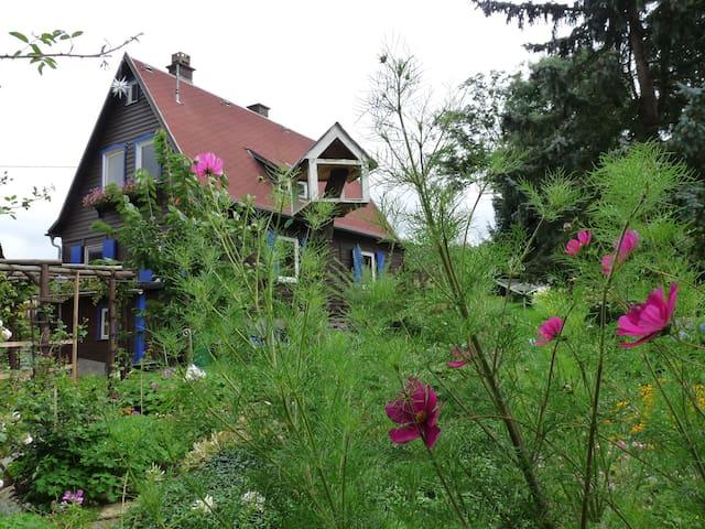 Ankommen und die Natur geniessen im Holzhaus