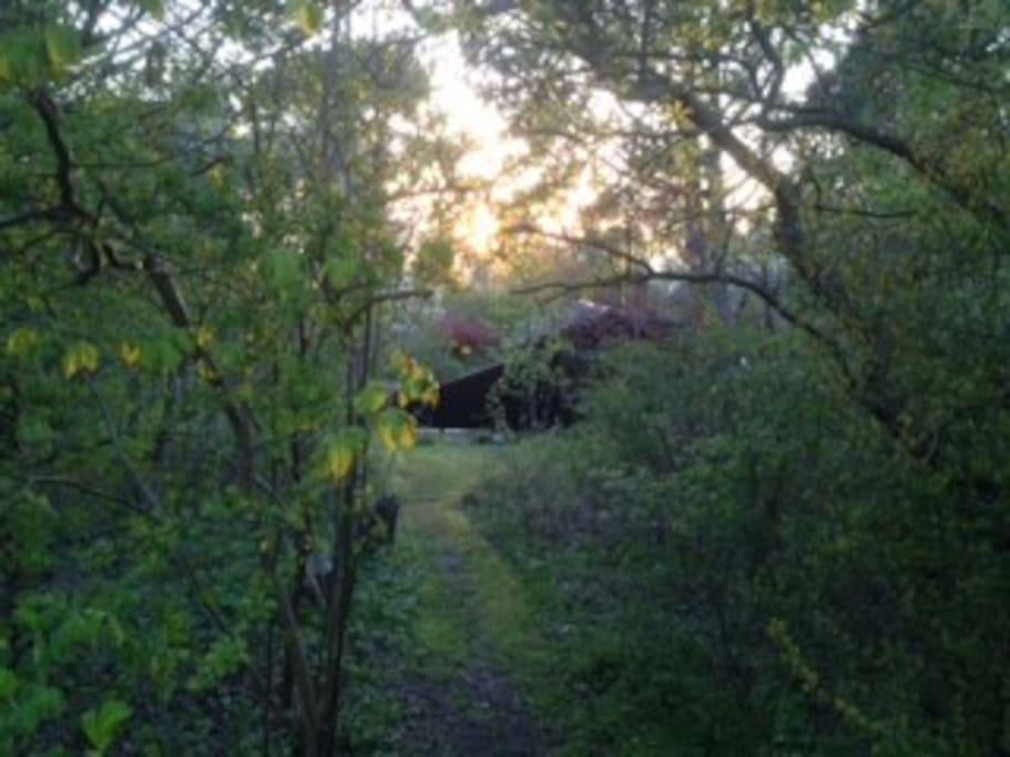 Stien inde i vores have - du kan se vores hus. Stien fører ud til vejen med udsigten til fjorden på den store klint