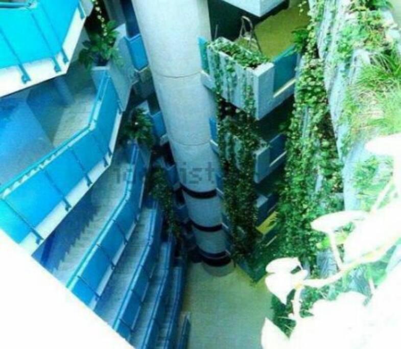 Iluminación natural y vegetación dentro del edificio. PRECIOSO