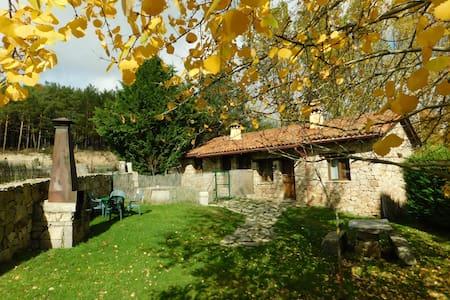 Casa Brincalobitos