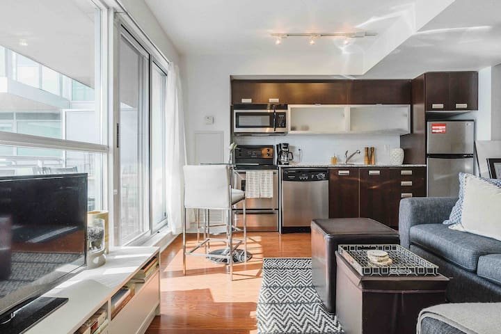 Entire Downtown Toronto Condo with Amazing Views!