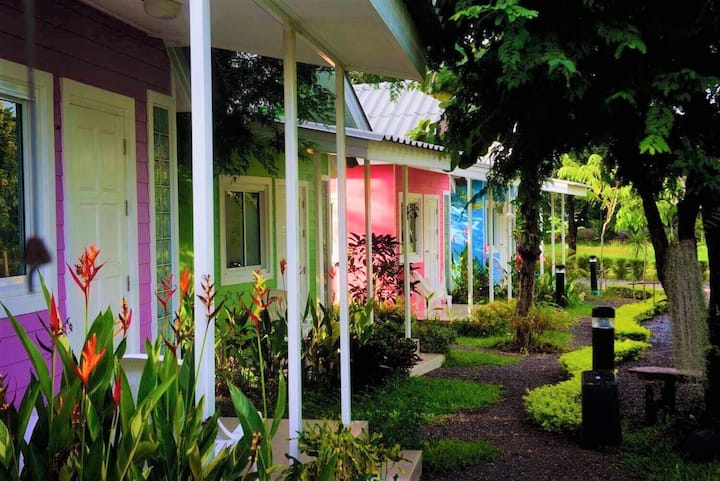 Colorful Houses with Pure Fresh Air and Coffee