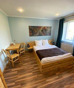 Гостевая комната в апартаментах Александровская