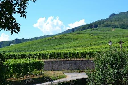 Au Coeur des Remparts & du Vignoble Alsacien - Dambach-la-Ville