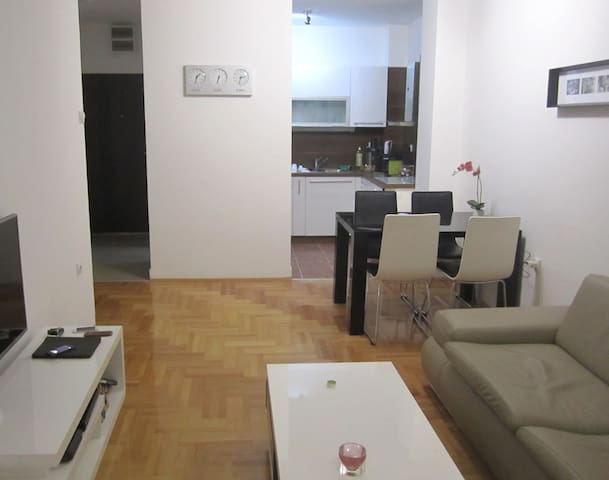 Designer Apartment with River View in City Center - Niš - Daire
