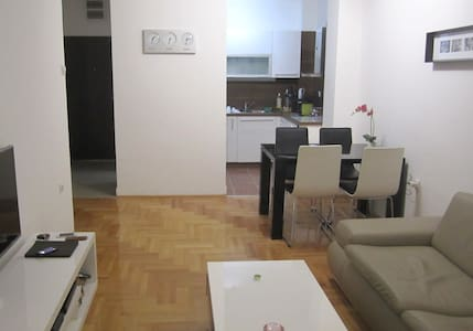 Designer Apartment with River View in City Center - 尼什 (Niš) - 公寓