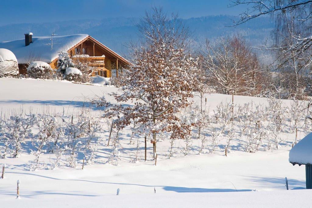 Ferienhaus Alpenpanorama Chalet mit 2 Ferienwohnungen