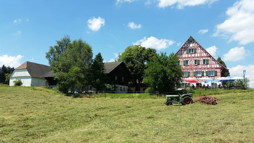 Schöne Ferienwohnung Allgäu / Bodenseeregion - Wangen im Allgäu