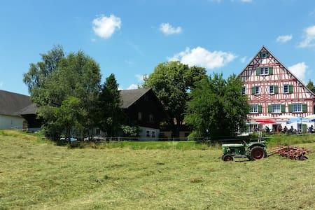 Schöne Ferienwohnung Allgäu / Bodenseeregion - Wangen im Allgäu - 公寓
