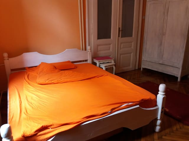 This is a nice and warm home...strict city centre. - Beograd - Apartamento