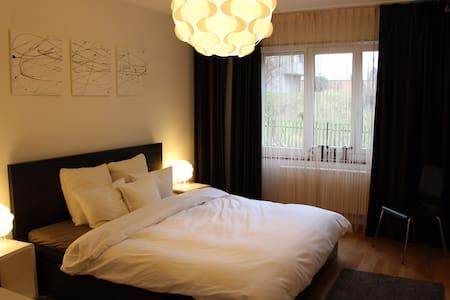 One bedroom apartment in Zurich - Zürich - Apartment