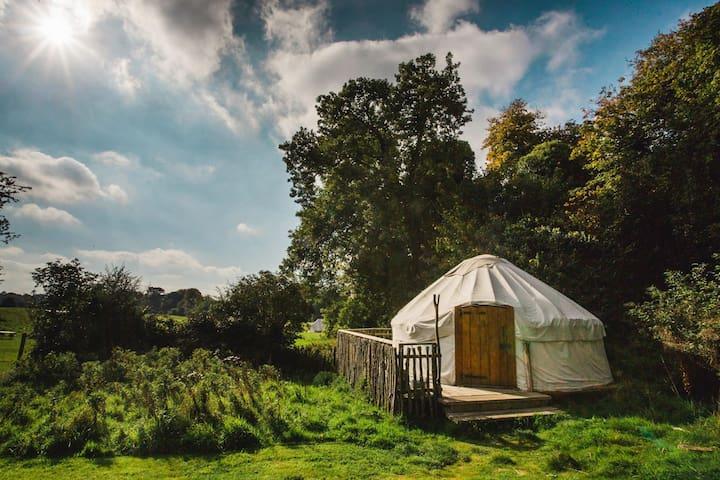 Oak - Yurt
