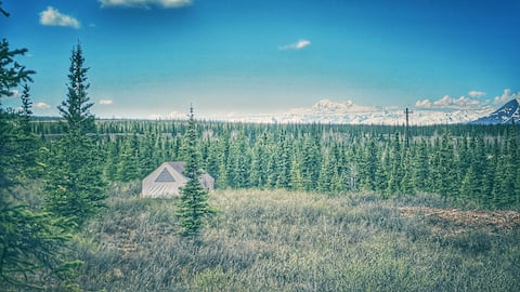 "The ""Bear"" Wall Tent Experience, Denali"