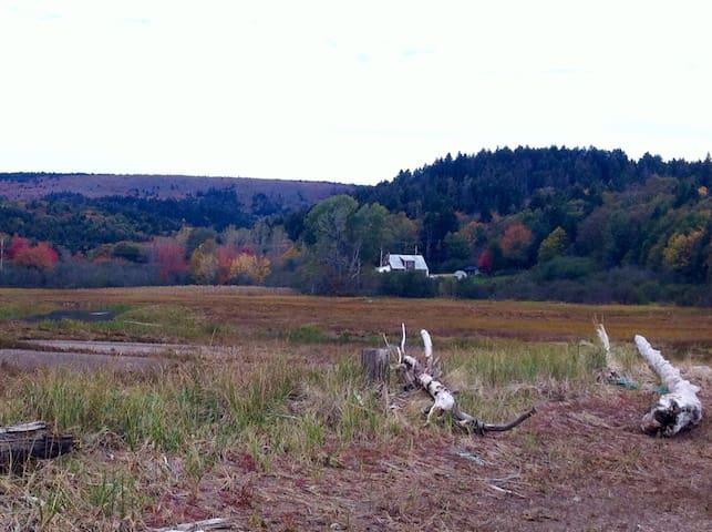 Blueberry Cottage on Bay of Fundy - Parrsboro