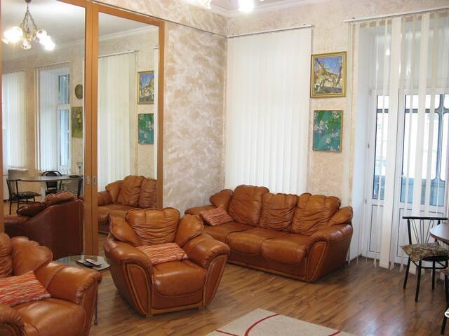 Stylish apartment - Kiev - Apartment