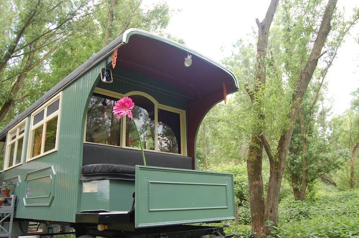Pipowagen/Paardentram in de Dreumelse uiterwaarden