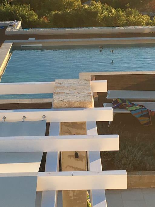 Vista della piscina dal terrazzo
