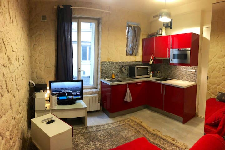 Charmant petit appartement parisien