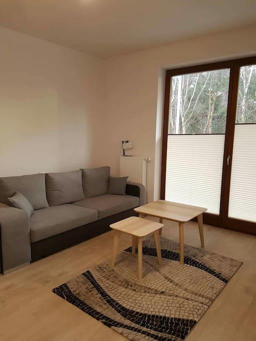 Pokój dzienny z dwiema kanapami