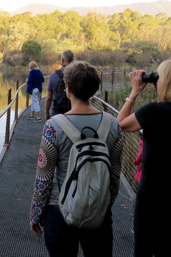 Spotting turtles and platypus