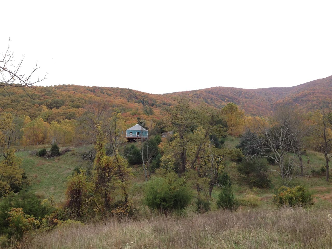 Stay in a fully-equiped luxury yurt in the foothills of the Blue Ridge mountains.