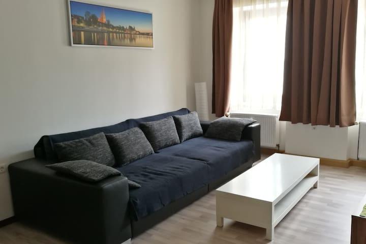 Large flat (3 rooms) in the oldtown of Regensburg - Regensburg - Apartment