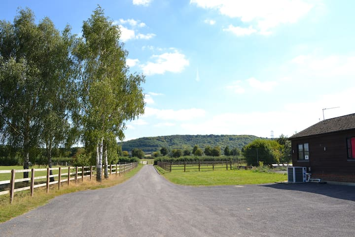 The driveway to and from The Pool House with the Ridgeway in the background.