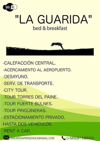 La Guarida Patagonica - Bed & breakfast - Punta Arenas - Apartment