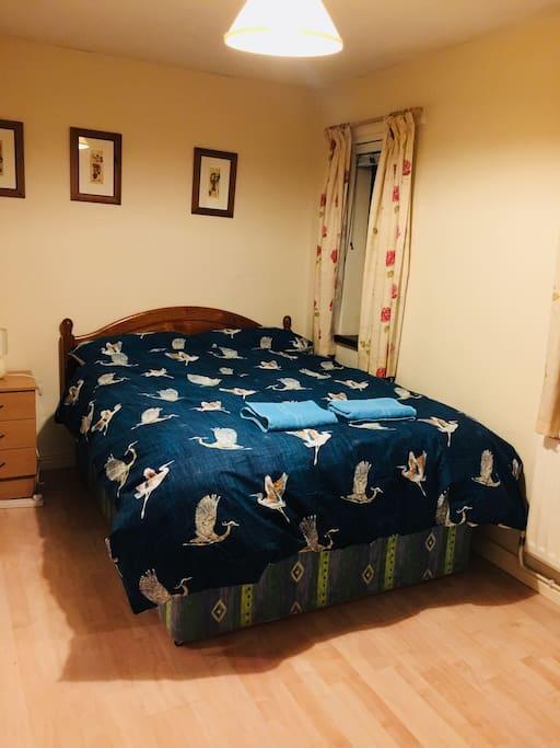 Room To Rent Near Queen S University Belfast