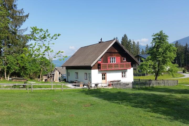 """Außergewöhnliches """"Ferienhaus/Almhaus"""" in Abtenau"""