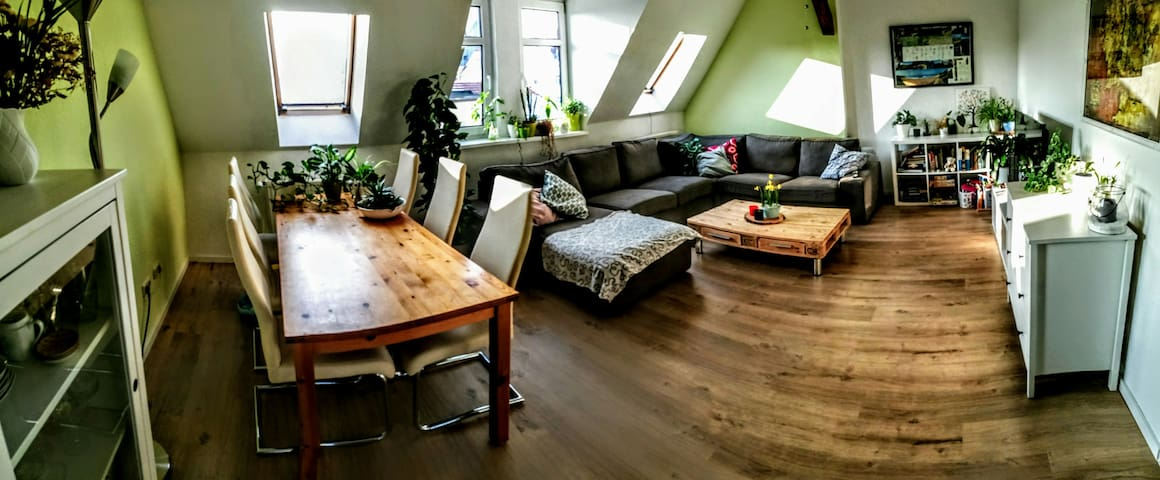 Privatzimmer in riesiger,  wunderschöner Wohnung