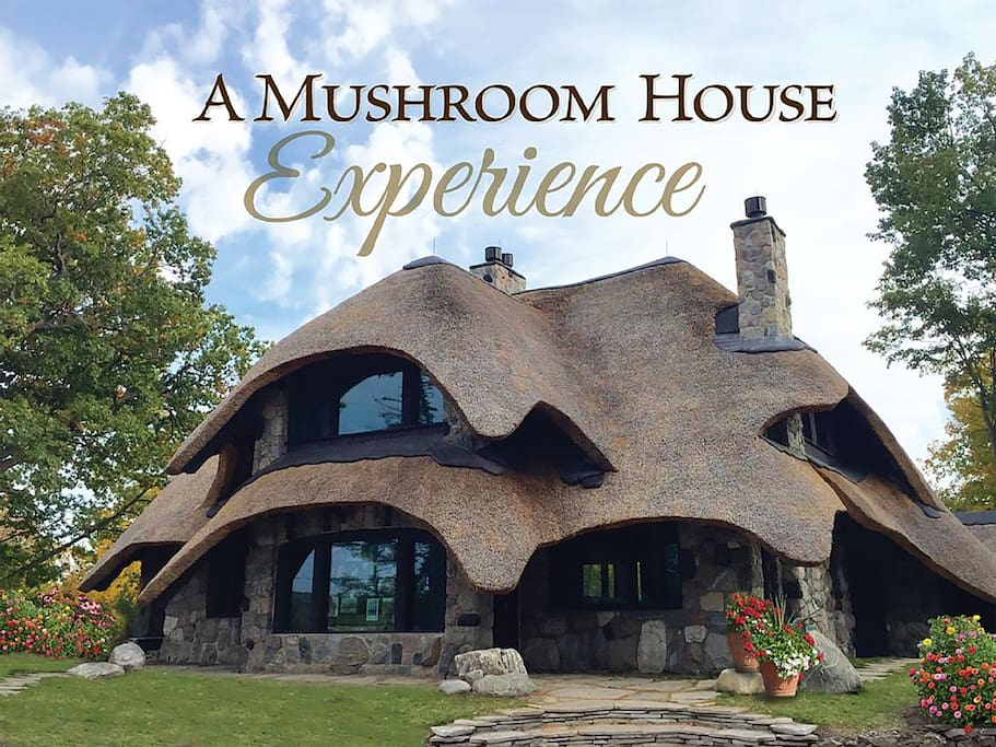A true Mushroom House Experience begins with a storybook retreat...