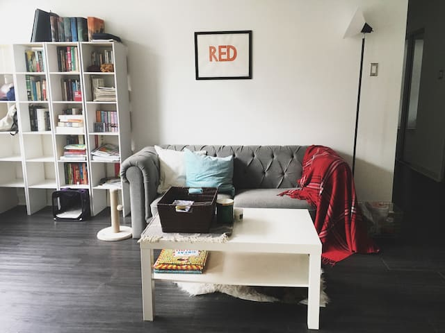 Hyde Park Hideaway near University of Chicago - Chicago - Appartement