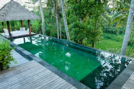Great location and superb views. - Ubud - House